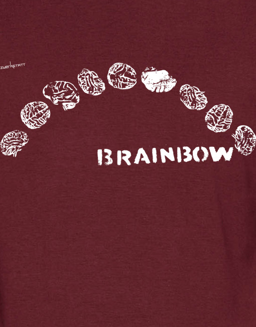 brainbow_h_2