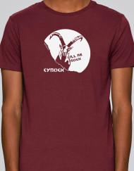 cybock_h_1